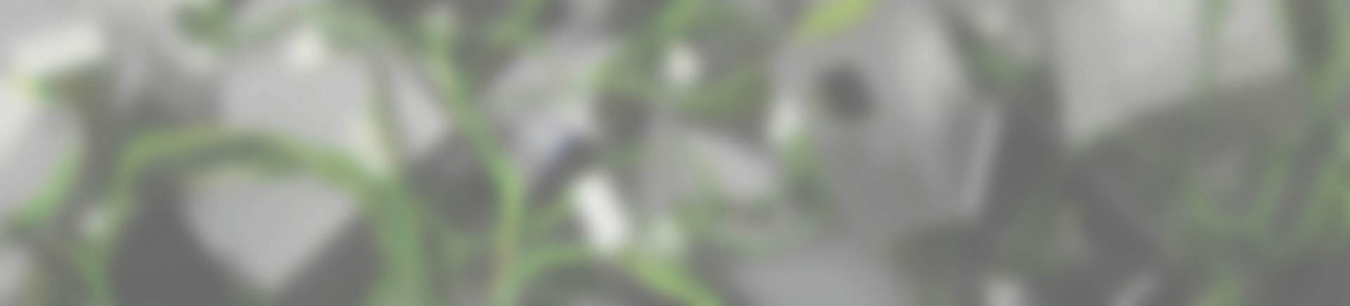slide-bg1_blur